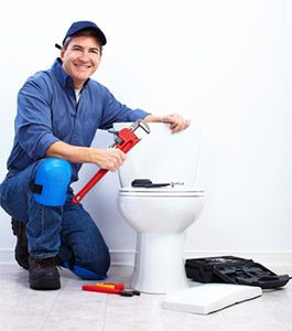 toilet repair simpsonville sc